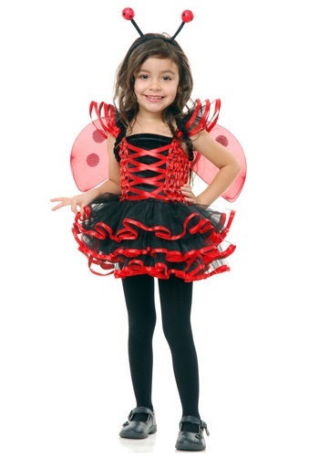 Cute Toddler Lady Bug Costume