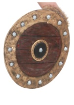 Viking Replica Shield