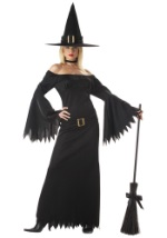 Sexy Sleek Witch Costume