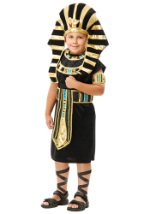 Boys Egyptian King Tut Costume