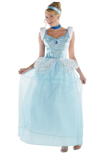 Cinderella Costume Adult