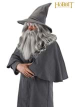 Gandalf Wizard's Hat