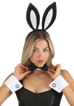 Bunny Costume Kit