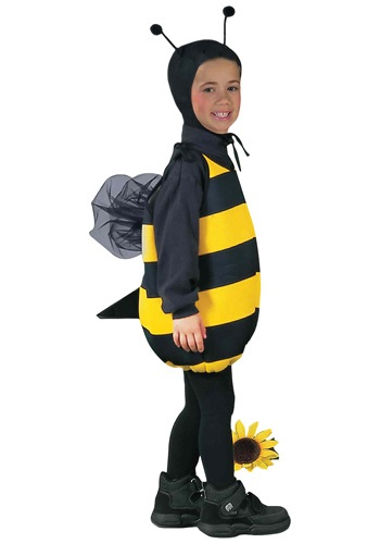 Honey Bee Kids Costume
