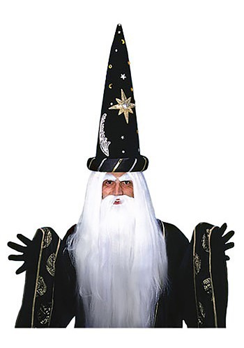 Wizard Beard & Wig Set