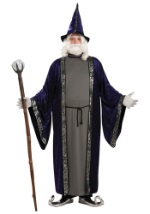 Wizard Plus Size Costume