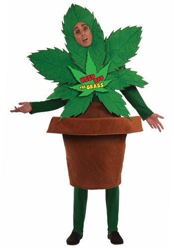 Adult Keep Off The Grass Costume