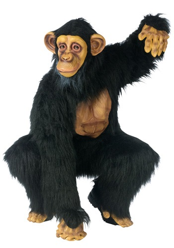 Mens Chimpanzee Costume
