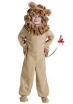 Boys Safari Lion Costume
