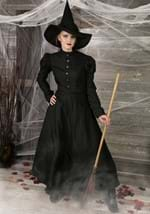 Deluxe Witch Costume