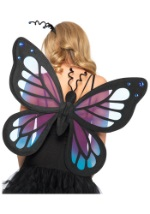 Beautiful Swallowtail Butterfly Wings