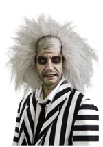 Adult Gray Beetlejuice Wig