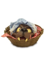 Wolf Face in Basket