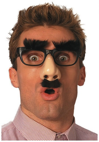 Disguise Nose Glasses